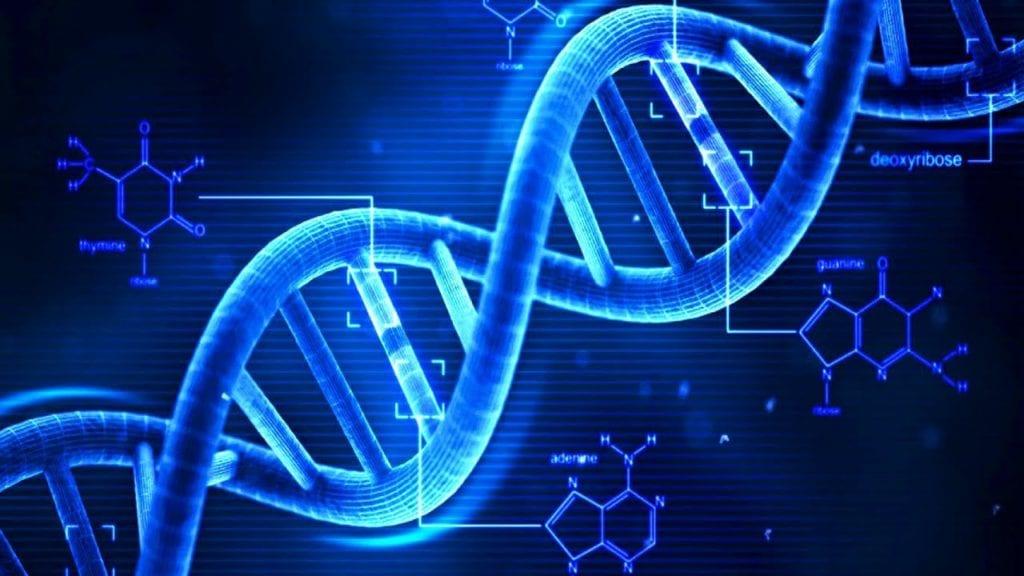 health risks of cell phones - DNA strand breaks