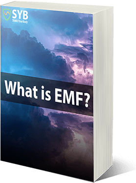 Free Guide: What is EMF?