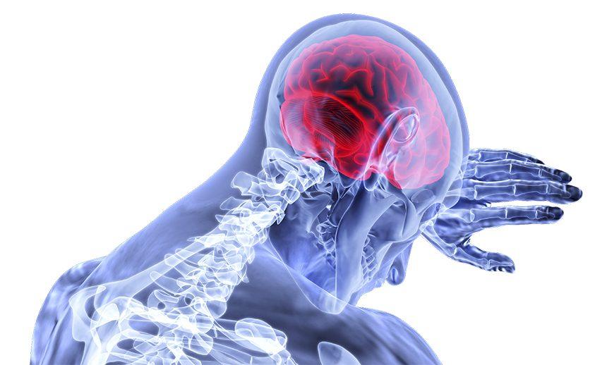EMF impacts brain health in numerous ways