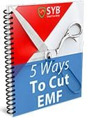 Free Guide: 5 Ways to Reduce Your EMF Exposure Right Now